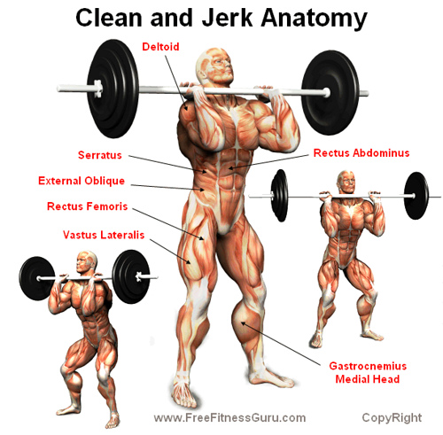 Clean and Jerk Anatomy ~ gareththomasnz